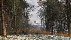 View of the Cage from Paddock Cottage at Lyme, Cheshire  (c) National Trust Images/Garry Lomas Photography