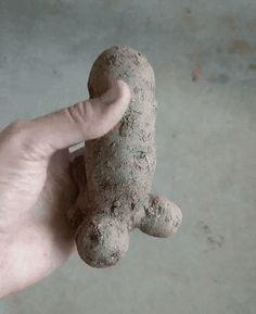 참 잘생긴 감자