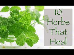 10 herbs that heal...
