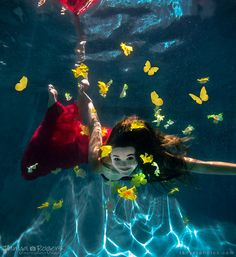 Butterflies - underwater photography by Tanya Rogers (tanyasphotos.com)