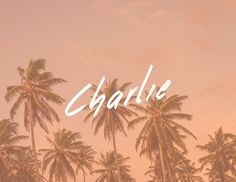 """Check out my @Behance project: """"Charlie Cosmetics""""  https://www.behance.net/gallery/48881065/Charlie-Cosmetics Branding - Cosmetics - Logo - Coconut - Coconut Sugar Scrub"""