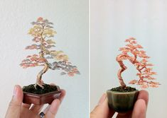 Miniature Wire Bonsai Trees by Ken To