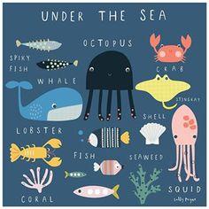 Illustrated guide to under the sea Sally Payne Jezebel Jack Meer Illustration, Pattern Illustration, Sea Creatures Drawing, Deco Cafe, Sea Drawing, Keramik Design, Life Under The Sea, Art Blog, Baby Animals