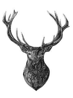 Zentangle Deer - Iclimbpyramids | Paintings & Prints, Animals, Birds, & Fish, Deer | ArtPal
