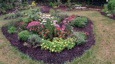 The Outback Garden — Creative Birding Diy Plants, Beautiful Gardens, Shrubs, Foliage Plants, House Landscape, Shrubs For Landscaping, Garden Planning, Garden Pests, Florida Plants
