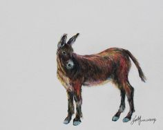 Wild and Free Burro Boxed Art Notecards by Lindy C Severns | Old Spanish Trail Studio, Lindy C Severns Fine Art