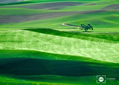 Lone Tree by Mark Brodkin on 500px