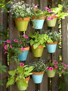 Add some paint to your old pots to brighten up a plain wall or fence