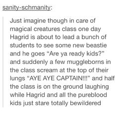 how great being a muggle-born at Hogwarts would be