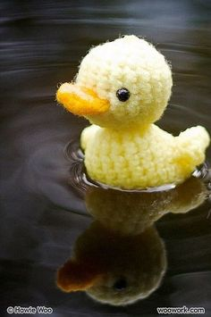 Cute crochet duck...cutest white rooster and other animals including felt birds and owls. No instructions.