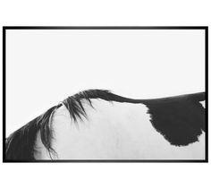 Horseback Framed Prints by Jennifer Meyers