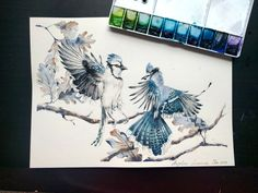 Watercolor Birds To Celebrate My First Anniversary Of Painting With Watercolor | Bored Panda
