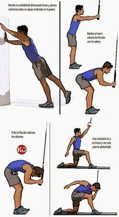 VARIACIONES DE EJERCICIOS ABDOMINALES | Aptitud Fitness