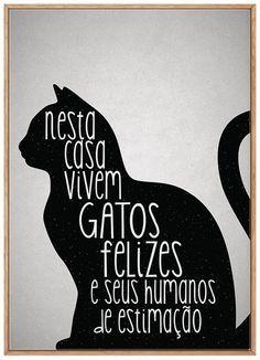 Love Pet, I Love Cats, Cool Cats, Crazy Cat Lady, Crazy Cats, Digital Foto, Cat Quotes, Cat Drawing, Diy Stuffed Animals