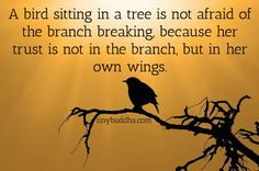 An image with the anonymous quote: A bird sitting in a tree is not afraid of the branch breaking, because her trust is not in the branch but in her wings.