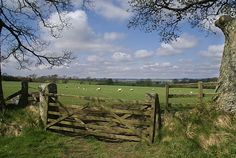 farm, coming home, countri fenc, fences, country life, homes, gates, place, fields