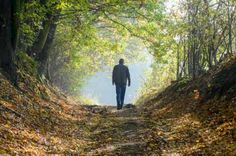 Natural remedies, like walking in the woods, can reduce anxiety.