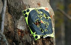 Survival Options: Air Rifles for Preppers - The Prepper Journal