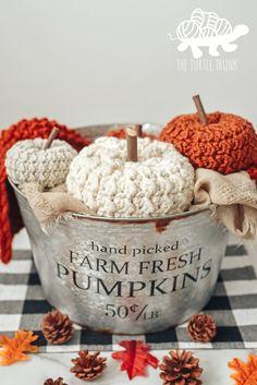 Grey Pumpkin, Pumpkin Stem, Pumpkin Crafts, Crochet Pumpkin Pattern, Crochet Patterns, Crochet Ideas, Fall Patterns, Crochet Stitches, Crochet Fall Decor