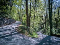 #Seerenbachfälle am #Walensee #Weesen #Amden #Wanderung Switzerland, Hiking, Country Roads, Plants, Tourism, Walks, Plant, Trekking, Hill Walking