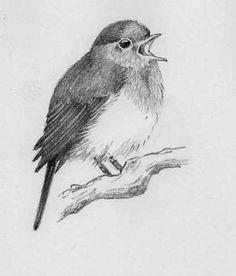 Pencil Sketch Drawing, Bird Sketch, Bird Drawings, Animal Drawings, Drawing Birds, Tiny Bird Tattoos, Tattoo Bird, Bird Tattoo Sleeves, Simple Bird Tattoo