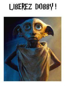 Affiche et jeu « libérez dobby » à imprimer pour une fête d'anniversaire Harry Potter