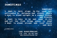 SOMETIMES by LEE SCHULTHEISS. (19881109) Bring It On, Let It Be, Walking Alone, Summer Breeze, Book Of Life, Breathe, Things I Want, Lord, Mindfulness