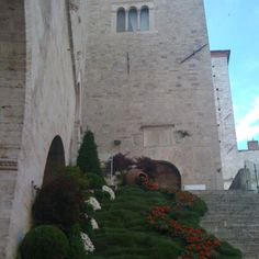 #Todi is putting its most elegant and flowered dress for #Todifiorita12 ! May 25-27 !