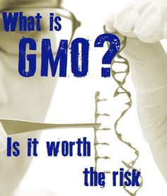 What is GMO? Who Really Knows?