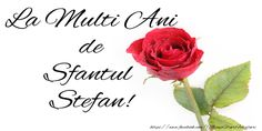 La multi ani de Sfantul Stefan! Happy Biryhday, Smiley Emoji, Birthday Wishes, Place Card Holders, Floral, Noroc, Special Events, Google, Happy Birthday