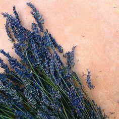 włoskie inspiracje, inspirująca włoszczyzna, lawenda, ciastka lawendowe, ciastka z lawendą, lavender cookies, lavender,  www.PrimoCappuccino.pl https://www.instagram.com/primo.cappuccino/