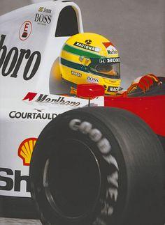 Nikita F1 : Photo