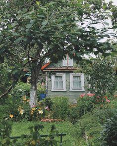 Мое утро каждый день начинается с прогулки по старым дачам 🏡🌿 здесь пахнет малиной, по дорожкам бегают ежики, а из-за низеньких, ветхих…