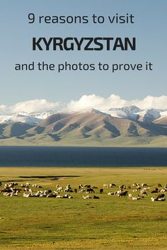 9 reasons to visit Kyrgyzstan - photos