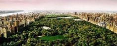 Dreams of Central Park | From a unique collection of color photography at https://www.1stdibs.com/art/photography/color-photography/