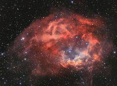 20 February 2017 | Lowers Nebula