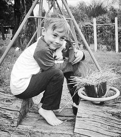 #goatvet likes this website fro Miniature Goats Australia Association Inc
