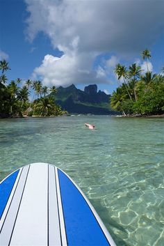 Can't wait to go on a trip somewhere tropical!