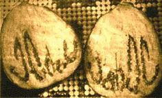 "Miraculous Aubergine (1996): The home of Salim & Ruksana Patel, in Bolton, England, has recently been inundated with about 50 visitors a day, coming to see their miraculous aubergine. Mrs Patel foresaw the miracle in a dream after she'd bought the aubergine from their local shop. On slicing the vegetable in half, she saw that the seeds were formed in the Muslim symbol ""Ya-Allah"", meaning Allah exists."
