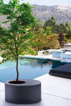 Obleeek Objects - Modern Concrete Planters For Indoor & Outdoor - if it's hip, it's here