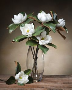 Small Bloom Magnolia Silk Flower Stems at Petals Office Scapes Direct Faux Flowers, Silk Flowers, White Flowers, Beautiful Flowers, Exotic Flowers, Yellow Roses, Fresh Flowers, Colorful Flowers, Purple Flowers
