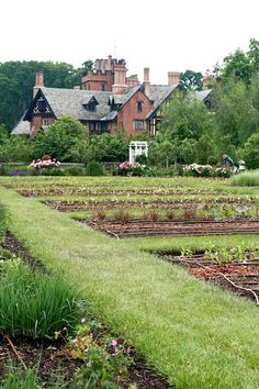 """Stan Hywet Gardens     """"The man who has planted a garden feels that he has done something for the good of the world.""""    - Vita Sackville-West"""