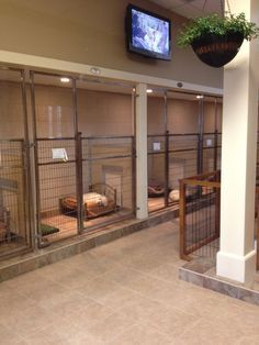 Dog and Large Animal Custom Enclosures masonco is part of Dog boarding kennels - This photo hosted by SmugMug; your photos look better here Dog Boarding Kennels, Pet Boarding, Animal Boarding, Shelter Dogs, Rescue Dogs, Animal Rescue, Dog Kennel Designs, Pet Hotel, Pet Resort