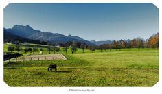 Pfandl November 2012 November, Mountains, Nature, Travel, Pictures, Scenery Photography, November Born, Naturaleza, Viajes