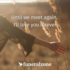 Grief & Loss Quotes - Until we meet again, I'll love you forever