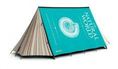 cool tent design