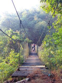 Jembatan Goyang - Hutan Pinus Loji Cijeruk