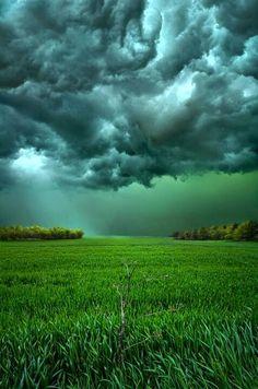 Correio da Júlia Paixão: chuva, essa bênção das deusas libidinosas, humífer...