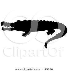Image result for alligator vector silhouette