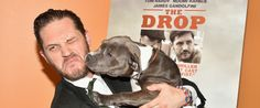 10 Pictures Of Tom Hardy Playing With A Dog - I love to see pit bulls being sweet like this adorable dog!